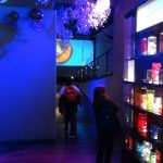 Laboratorio de medusas de plástico Oceanogràfic