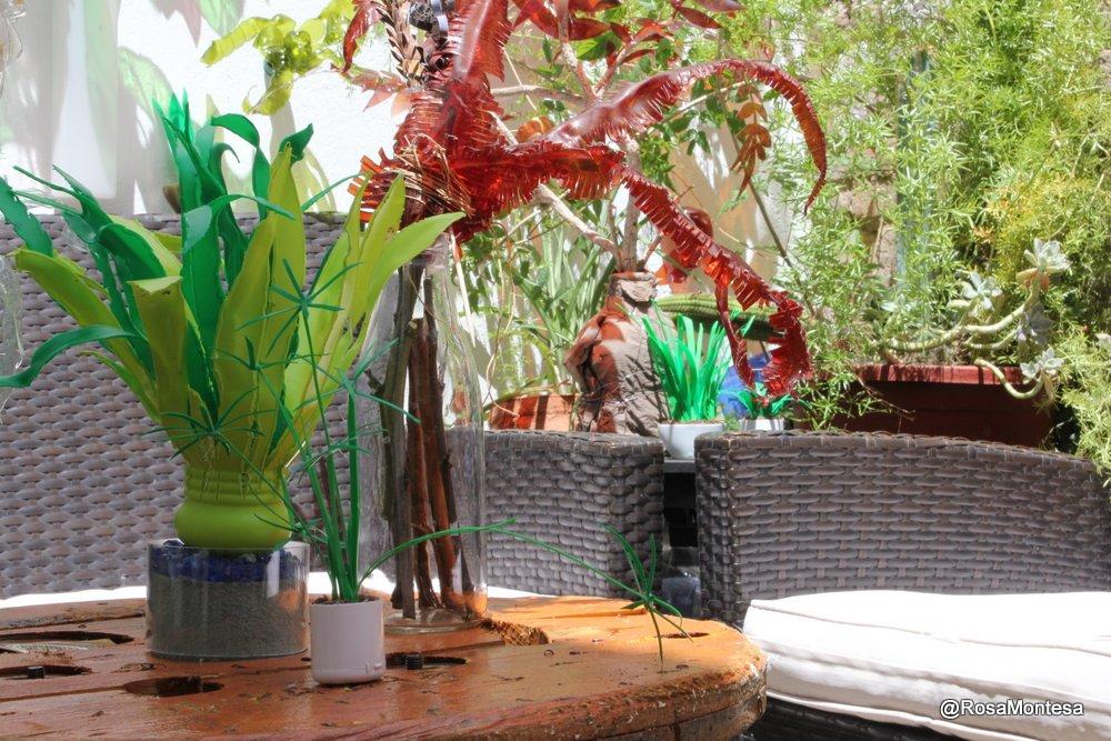 Plantas, jardin con botellas de plástico en el patio de Coworking Valencia