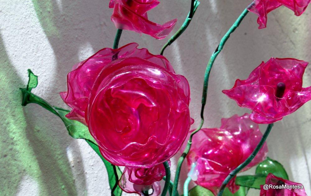 Plantas, jardin con botellas de plástico Rosas con envases PET