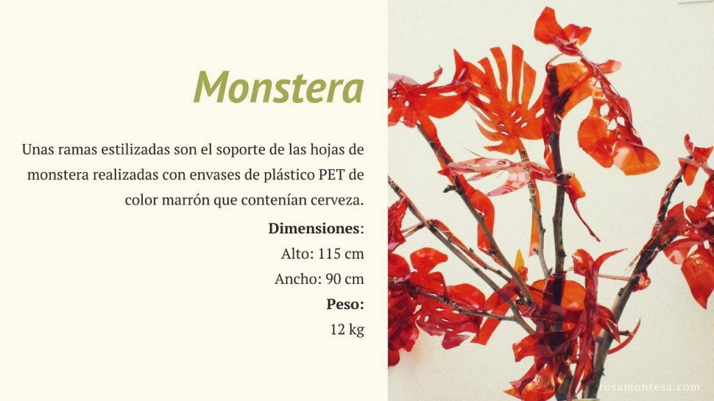 Monstera. Naturaleza Plástica por Rosa Montesa. Reciclado Creativo