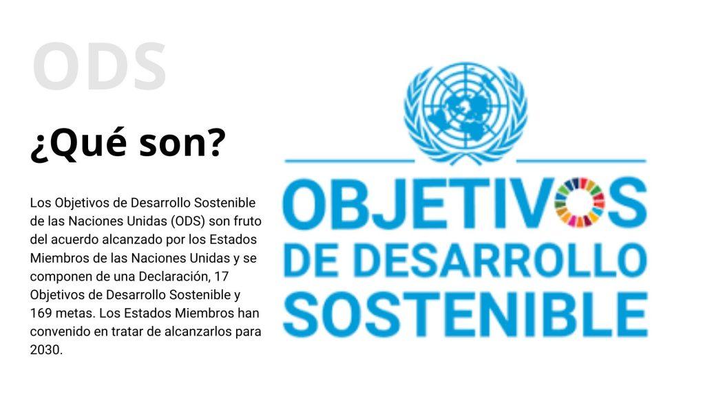 OBJETIVOS DE DESARROLLO SOSTENIBLE - QUÉ SON